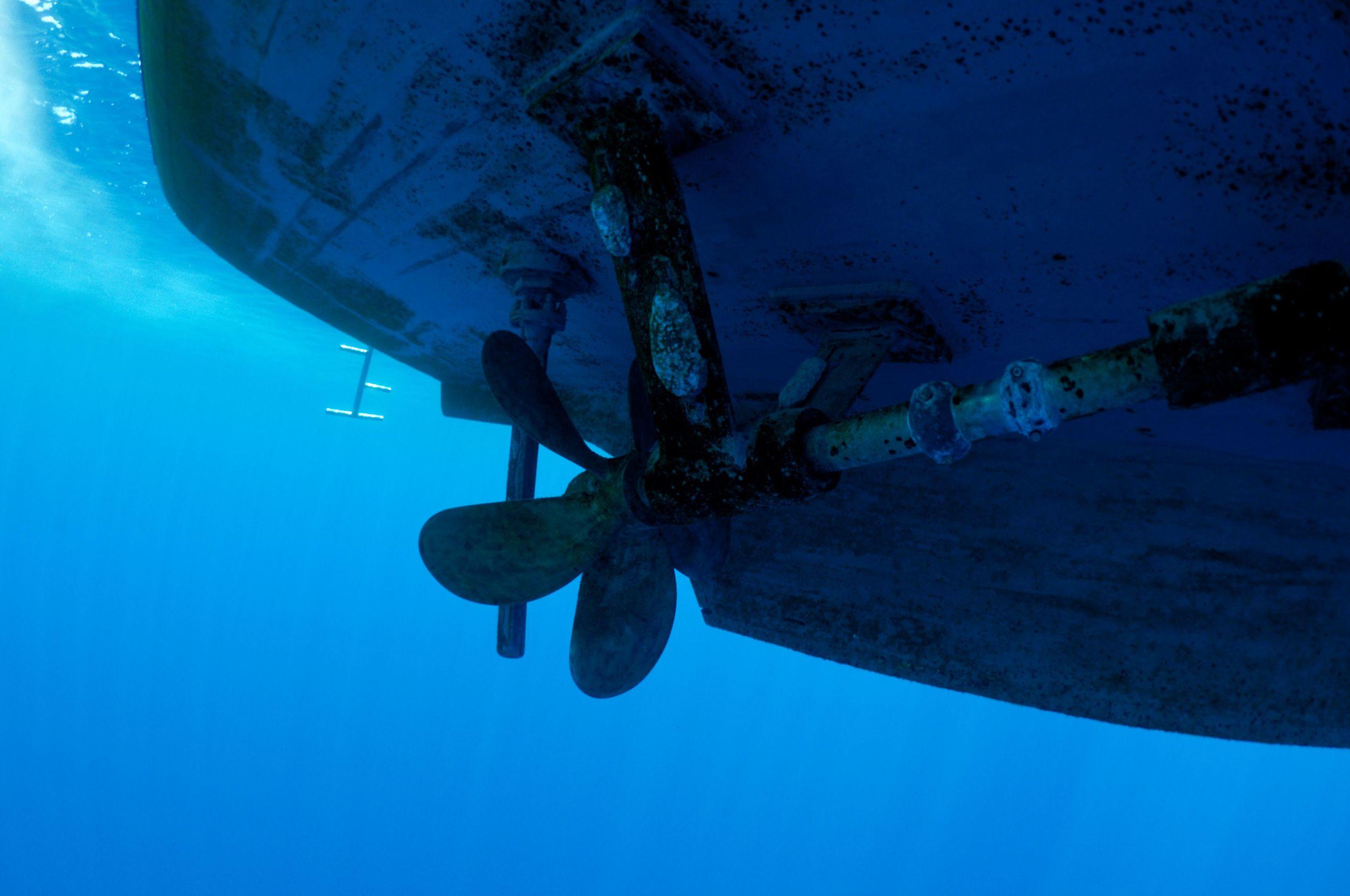 Sgt  H2o U2019s Dive Services