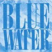 bluewatersurveys.jpg